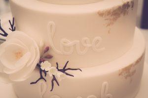 wedding cake case